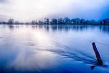 Winter Fogscape
