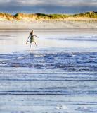 Tip-Toe through the Surf