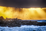 Atlantic Storm Approaching Crab Island