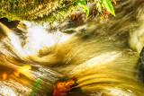 Light & Water