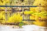 Black Bridge - Golden Hour