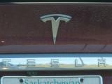 Emblem 11000095