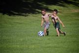 The Mini World Cup