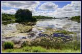 Ireland - Co.Leitrim - Lough Rynn
