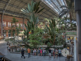 The old station hall, now a tropical garden