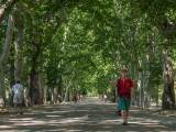 Park waking in Madrid