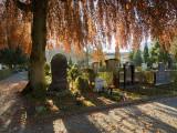 Autumn in cemetery Friedental