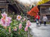 Strolling along the romantic village