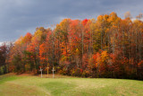 FALL COLOR EAST OF RED RIVER GORGE