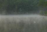LAKE REBA, RICHMOND, KY