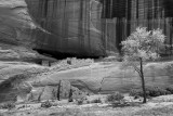 WHITE HOUSE RUINS, CANYON DE CHELLY
