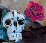 Skeleton Rose