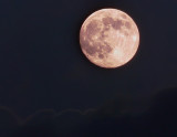 August 2014 Full Moon Rise
