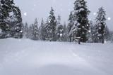 Flashing the Snow...