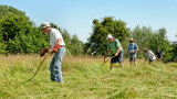 Herefordshire Haymaking