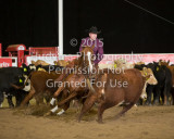 Wrangler Futurity October 14 - 18, 2015