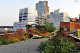 At High Line Park