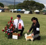 Group 2 at West Oahu Jan. Saturday show