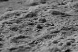 Salt crystals at the Dead sea