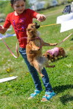 Pet Parade Expo - Taylor Farm - May 17, 2014