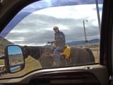 Horse Powered Alternative Transportation