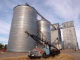 Dutton Farmers Elevator Co