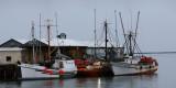 The Quiet Dock