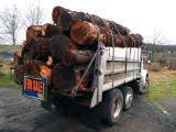 Firewood The Hard Way