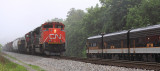 NS 116 with a pair of CN motors meets 955 at Danville KY