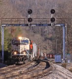 NS 174 drops down off of Kings Mountain with a BNSF Possum on the point