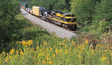 Virginian 1069 has a good roll on Northbound 224 as the train passes through Goldenrod covered hills near Parkers Lake, Ky