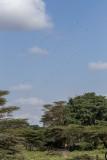 2016 Africa-1951.jpg