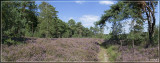 panorama4748-4750kopie.jpg