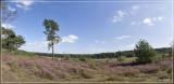 panorama4757-4760kopie.jpg