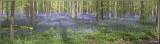 panorama8301-8304.jpg