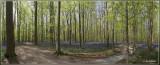 panorama8525-8530kopie.jpg