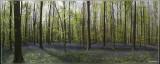 panorama 8692-8696kopie.jpg