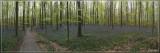 panorama8721-8728kopie.jpg