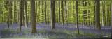 panorama 8760-8762.jpg