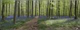 panorama8886-8890kopie.jpg