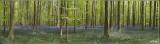panorama8976-8987.jpg