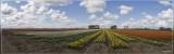 panorama 4821-4826kopie.jpg