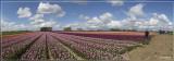 panorama 4855-4860kopie.jpg