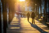 Late zon aan de Dijver