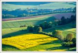 Franconian Spring
