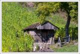 Vineyard Cabana