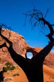 Arizona 2005-07