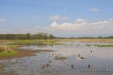 Lake Nakuru and Menengai Crater - 07 Jul 2013
