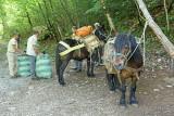 Paklenica national park_MG_8638-111.jpg