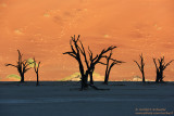 Deadvlei Early Morning